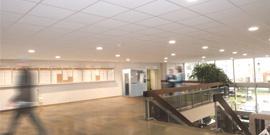 Université Claude Bernard UCBL Lyon 1